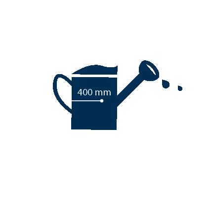 Une plante de tomate nécessite 400 mm d'eau, en fontion du climat.